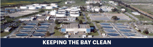 keeping-the-bay-clean