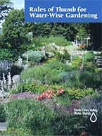 Rule of Thumb for Water Wise Gardening