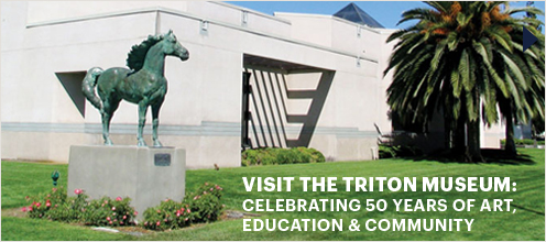 Visit the Triton Museum: Celebrating 50 Years of Art, Education, and Community