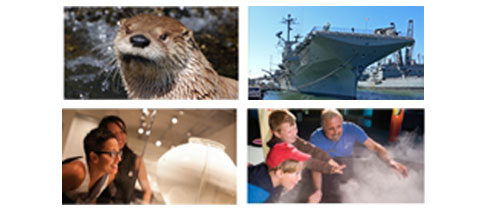Sea otter, battlship, people at museums