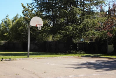 Homeridge Basketball Court